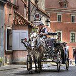 По Варшаве на велосипеде — необычные экскурсии в Варшаве