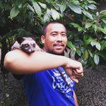 Природные сокровища и колорит Бали — необычные экскурсии в Бали