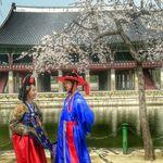 Погружение в атмосферу Сеула — необычные экскурсии в Сеуле