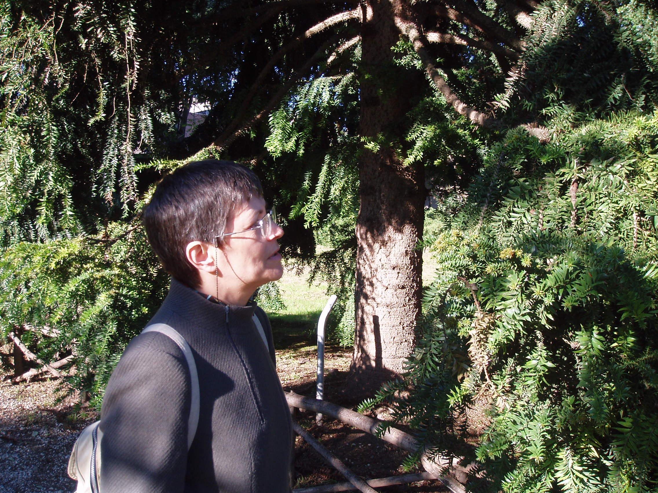 Частный гид экскурсовод по Риму Юлия
