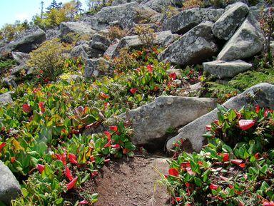 Гора Пидан— восхождение кместу силы