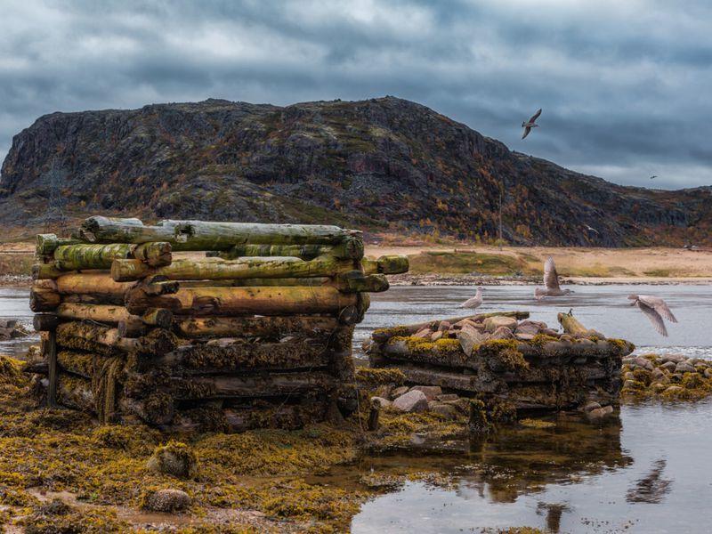 Териберка— открыть неистовую красоту Арктики