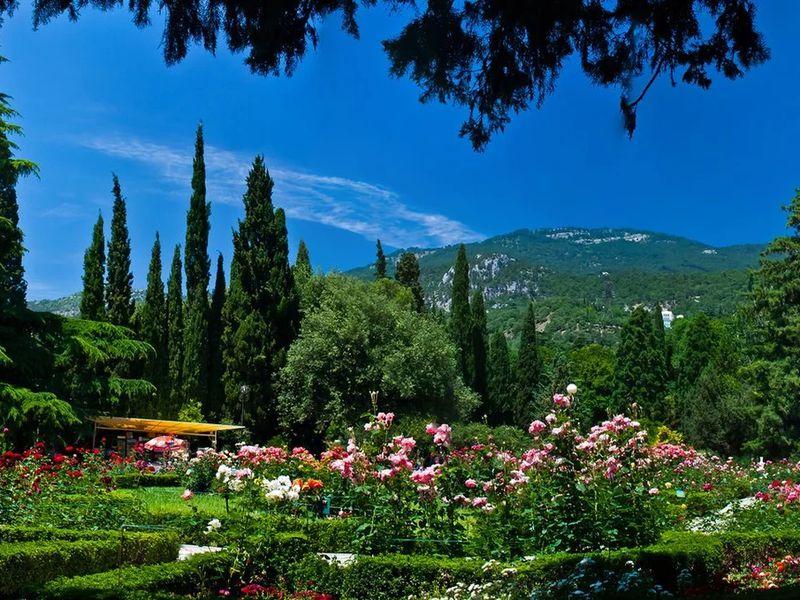 Никитский ботанический сад width=