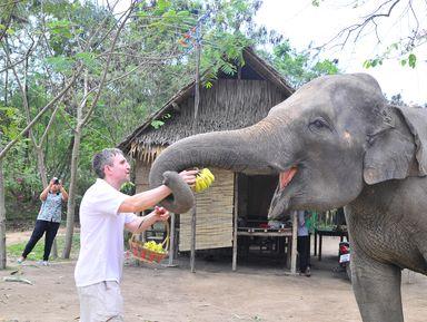 Тайский вояж: что не показывают туристам!