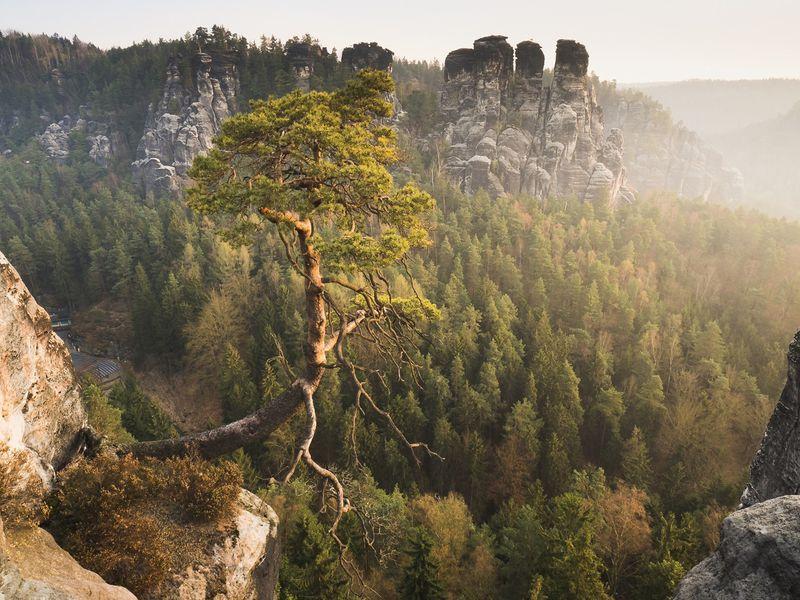 Экскурсия Магия Саксонской Швейцарии