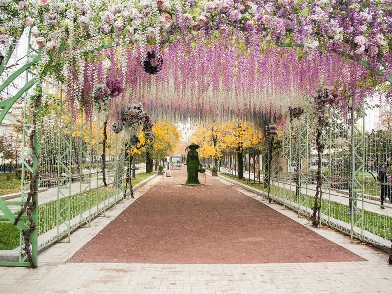 поверхность грунта красивое место для фото весной москва чем носить