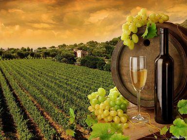 Колыбель вина — Кахетия!