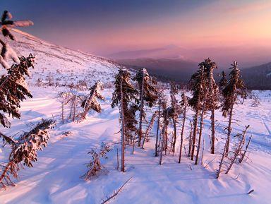 На снегоходе к Перевалу Дятлова