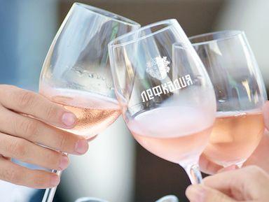 Дегустационный винный тур выходного дня «Лефкадия»