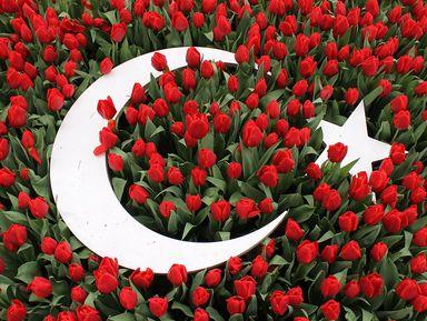 Османские султаны и их тюльпаны