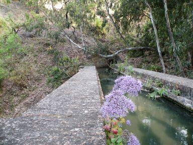 Прогулка поприродному парку «Горы Малаги»
