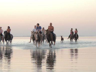 Экскурсии и гиды - Хургада