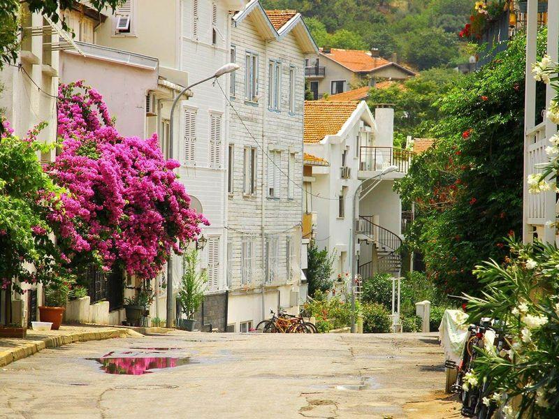 Экскурсия Из Стамбула — на живописные Принцевы острова!