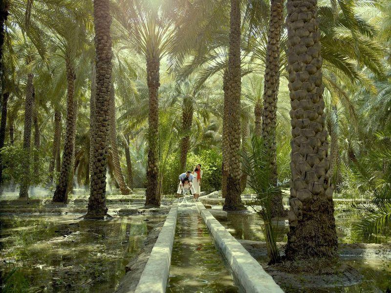 Экскурсия ИзДубая— вАль-Айн