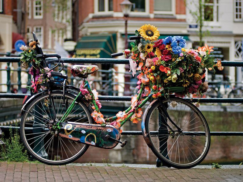 Экскурсия Амстердам — велосипедная столица Европы