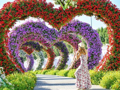 Современный Дубай, Парк цветов и Global Village