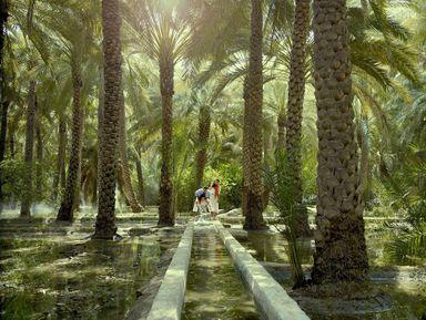 ИзДубая— вАль-Айн