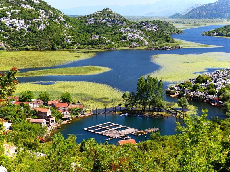 Фото: По Скадарскому озеру с черногорцем