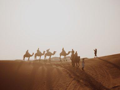Караван-тур: прогулка на верблюдах