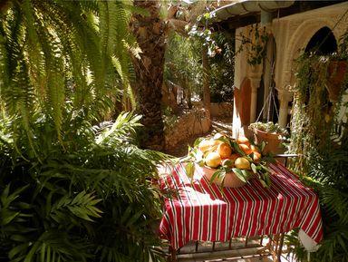 Арабская чайная среди садов, пения птиц и журчания воды