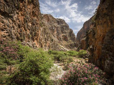 Дикая природа Крита: ущелье Арадена июжное побережье