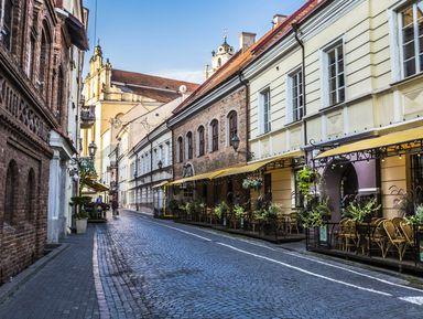 Экскурсия : Ежедневная прогулка по Вильнюсу
