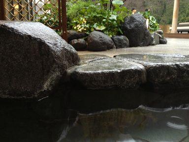 Целебные воды Хаконе
