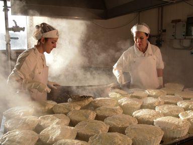 Сыр и вино в живописном Сан Джиминиано