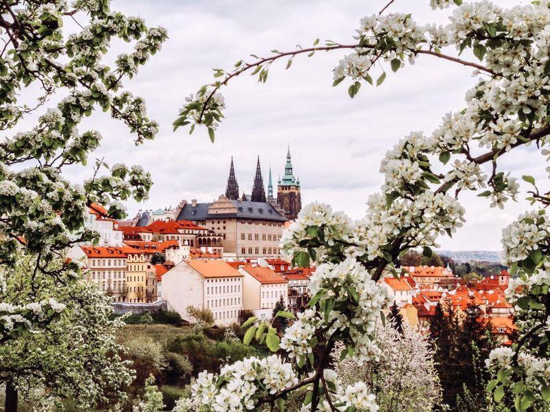 Экскурсия Инстаграмная Прага