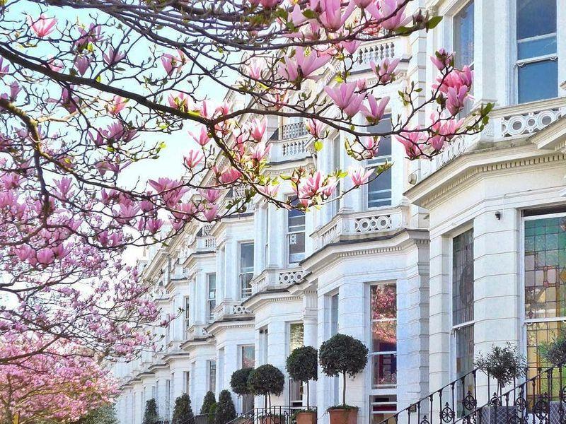Экскурсия Элегантный Лондон: прогулка порайону Holland Park