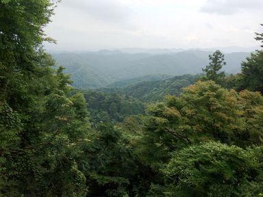 В поисках Тэнгу на горе Такао