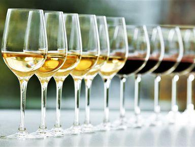 Португальские вина: первое знакомство