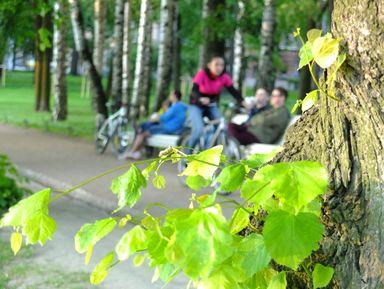 """Экскурсия """"Нетривиальный велосипедный променад"""": фото"""