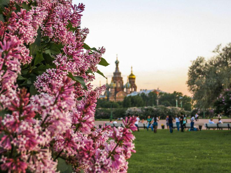 Экскурсия Петербург с первого взгляда