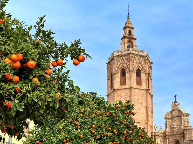 Ежедневная прогулка по Валенсии