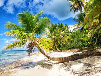 Заповедная Доминикана наострове Саона