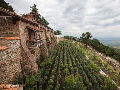 Кахети— колыбель вина, церквей инеожиданных сюрпризов
