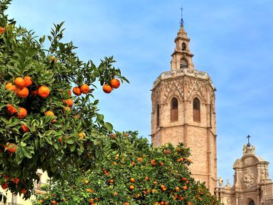Экскурсия в Валенсии: Ежедневная прогулка по Валенсии