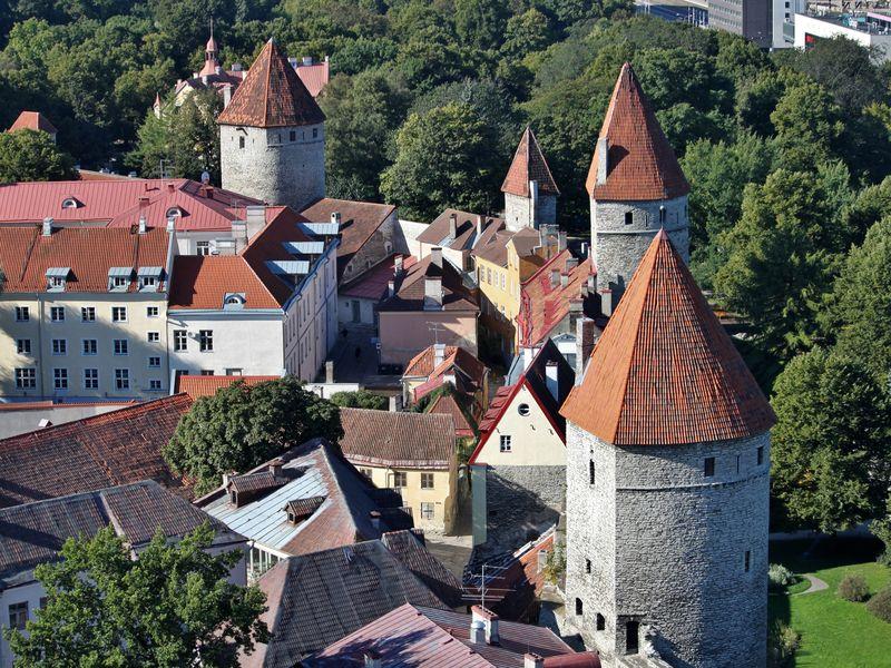 Жизнь средневекового Таллина width=