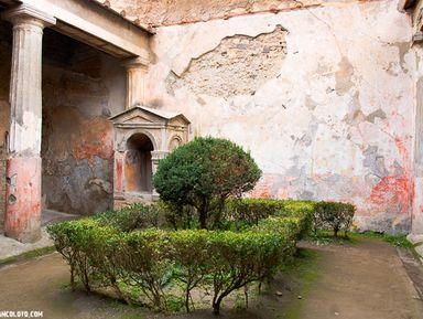 Помпеи — взгляд в прошлое