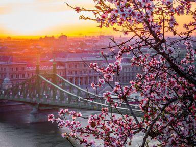 ИзВены вВенгрию: поездка вБудапешт