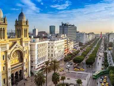 Карфаген— Сиди-Бу-Саид— Тунис