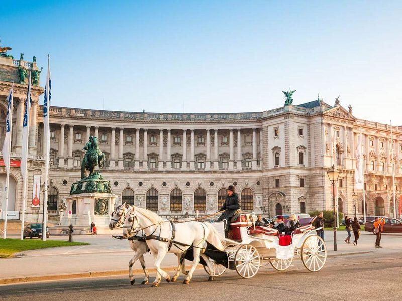 Фото: Вена для новичков