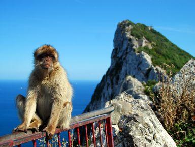 Гибралтар: путешествие к легендарной скале