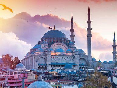 Стамбул в компании профессионала