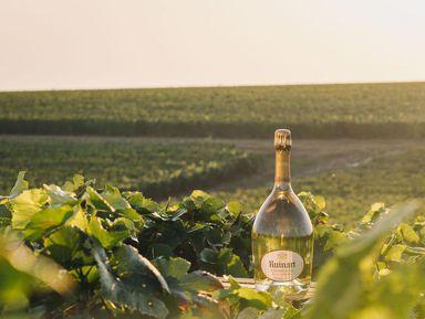 Роскошь ипростота Шампани