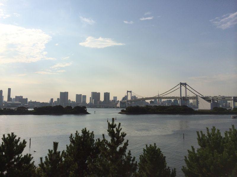 Токио за четыре часа