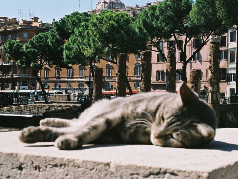 Темная сторона Рима: познавательно и эмоционально!