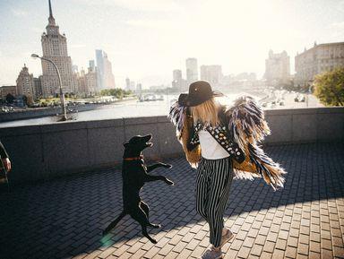 Парадная Москва: прогулка с фотографом