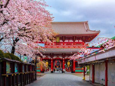 Влюбиться в Токио за один день!